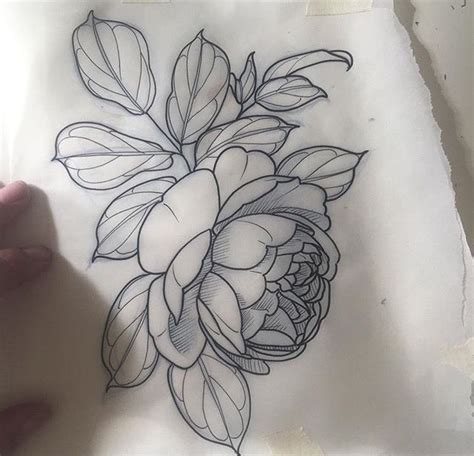 peony rose tattoo designs best 25 peony drawing ideas on