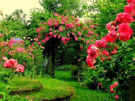 wallpaper flower house garden flower with house http refreshrose blogspot com