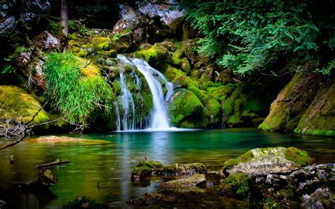 forest waterfall wallpaper 23712 6920644