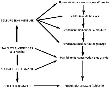 diagramme technologique de fabrication du yaourt production et valorisation du ma 239 s 224 l 233 chelon villageois
