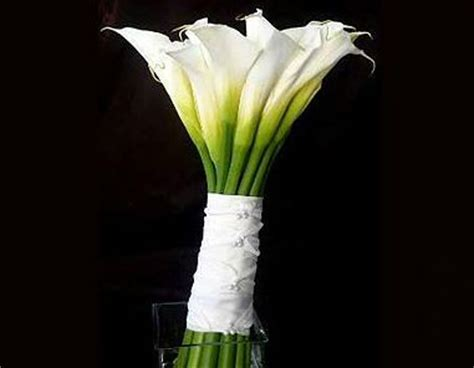 alcatraz wedding bouquete | wedding bouquets | pinterest