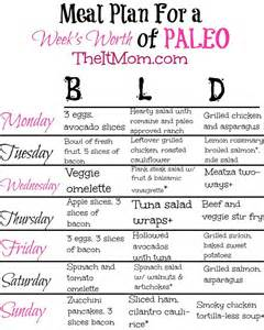 the paleo diet a beginner s guide meal plan the it