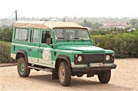 imagenes de jeep verdes jeep verde descargar fotos gratis