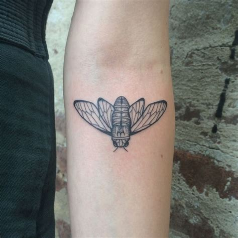 cicada tattoo meaning best 25 bug ideas on bee