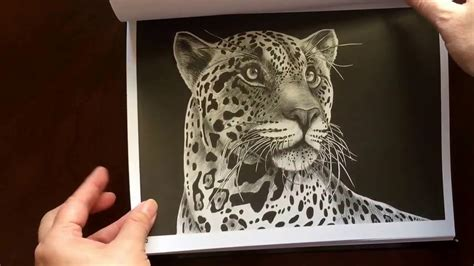 intricate ink animals in 0764974696 intricate ink animals in detail by tim jeffs youtube