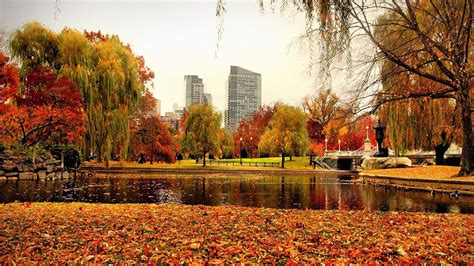 in fall 11 must do fall activities in boston