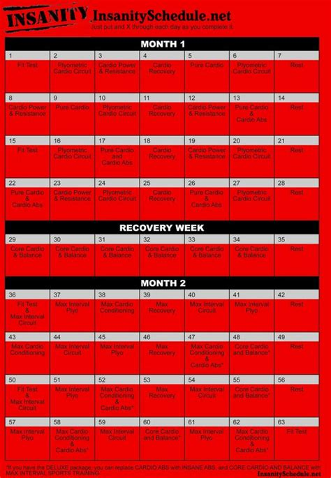 The Rack Workout Guide Pdf by Pdf Insanity Workout Schedule And Insanity