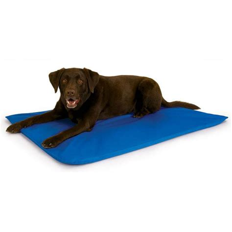 cool bed for dogs pet cool bed iii the green head