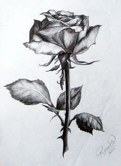 imagenes para dibujar a lapiz pdf perrito con rosas perrito con rosa pinterest l 225 piz