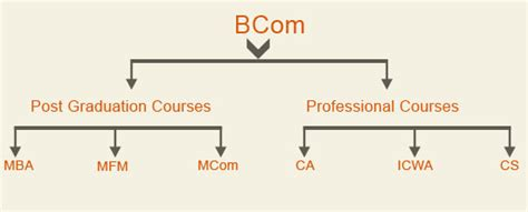 Mba Options After Bcom by Different Career Options After 12th Commerce