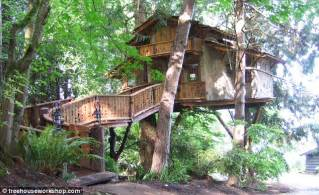 Wooden Cabins To Live In by Treehouses For Adults Wooden Cabins Built In Gardens As