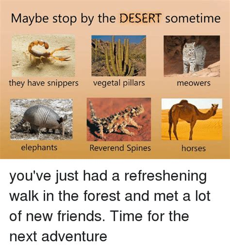 the adventures of fishboy maybe this isn t for you books desert memes of 2017 on me me antisociable