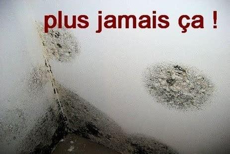 Enlever L Humidit D Un Mur 3079 by Traitement Anti Moisissure Mur Platre Bande