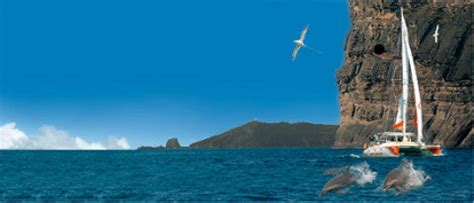 catamaran for sale mauritius successful cruise charter company in mauritius for sale