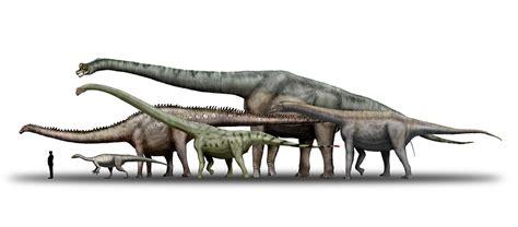 los 10 dinosaurios mas grandes que existieron ecolog 237 a los 10 dinosaurios mas grandes de la tierra listas curiosas