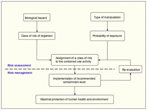 biological risk assessment template contained use biological risk assessment sheets