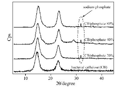 xrd pattern cellulose xrd patterns of pure bacterial cellulose and bacterial