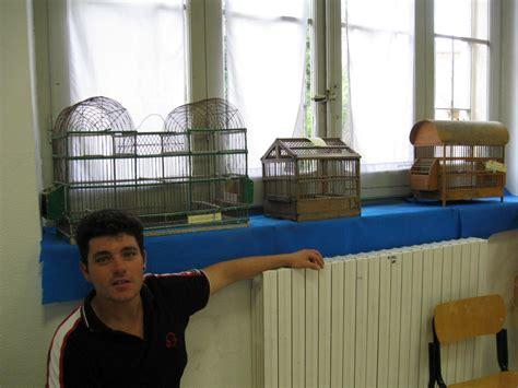 gabbie per uccelli antiche associazione pesarese ornicoltori