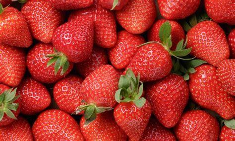 tips memilih  menyimpan buah stroberi resepkoki