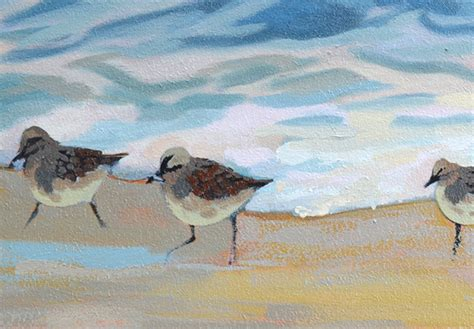 sandpiper birds painting update p j cook artist studio