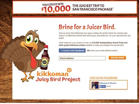 Kikkoman Sweepstakes - kikkoman juicy bird sweepstakes