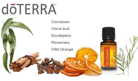 Doterra Detox Tea by On Guard The Protective Blend Learn Heal