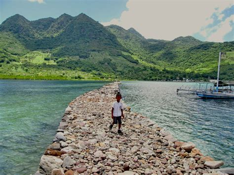 film misteri pulau tanpa nama mongabay travel kojadoi pesona jembatan batu di pulau