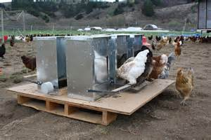 Farm Feeders New Grant Funded Chicken Feeders Installed Fifth Farm