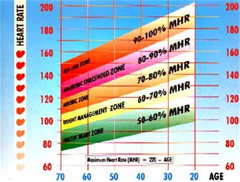 weight loss zone vs cardiovascular zone target rate zones