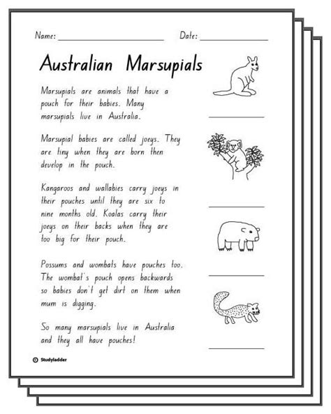 printable reading comprehension year 2 free year 2 comprehension worksheets australia reading