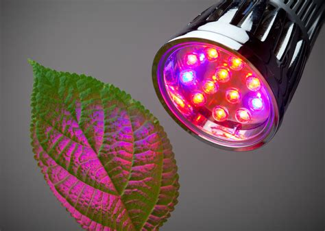 Growing Lights by How To Get The Most From Your Led Grow Lights Ebay