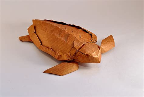 Origami Sea Turtle - this week in origami rabbit coming out the side of a