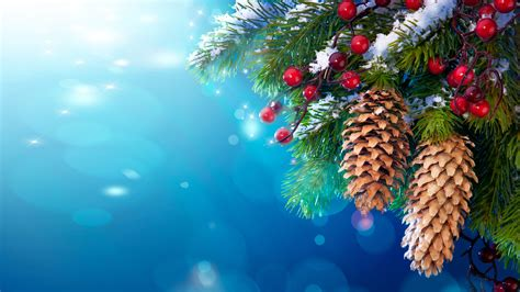 year christmas pine twigs  berries cones snow festive wallpaer hd