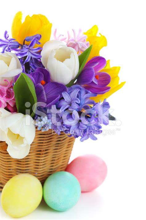 mazzo di fiori bellissimo bellissimo mazzo di fiori di primavera nel cestino con le