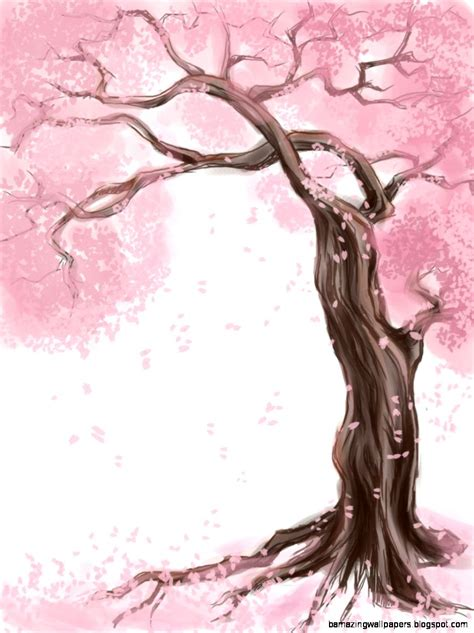cherry bloosom tree cherry blossom tree drawing amazing wallpapers