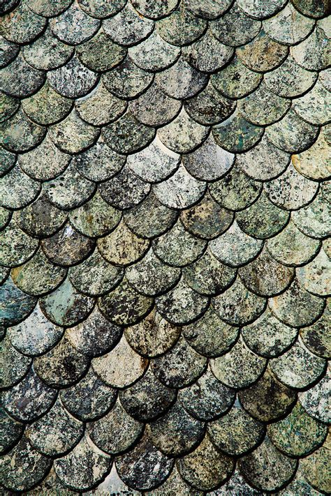 norwegian fish scale pattern slate roof digital art