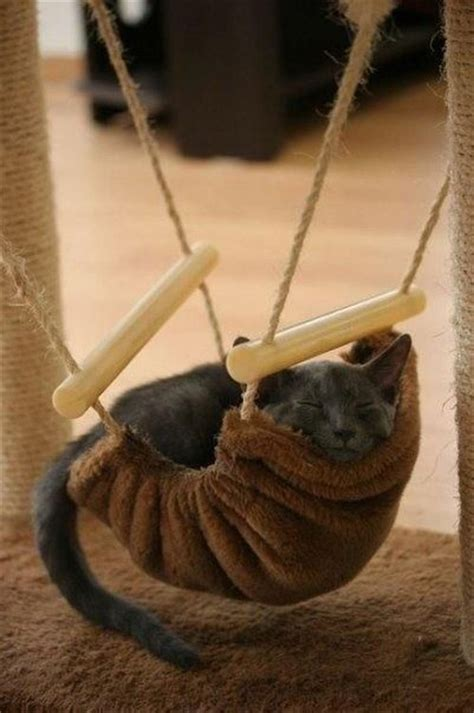 Cat Hammock Chair by 112 Best Furniture For Cats Images On