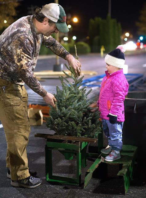lowes dot com christmastrees storagesbsgs trees are family business news greensboro