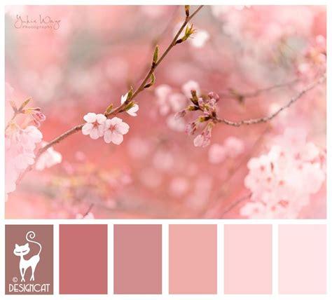 cherry blossom color cherry blossom pink blush dusky designcat colour