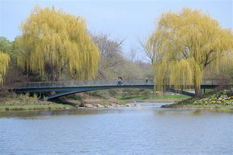 glencoe il chicago botanic gardens ranger