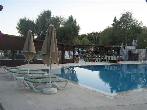 Boutique Pool View pool view picture of gumbet resort boutique hotel gumbet tripadvisor
