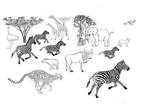 coloring pages african savanna trend 452718 171 coloring