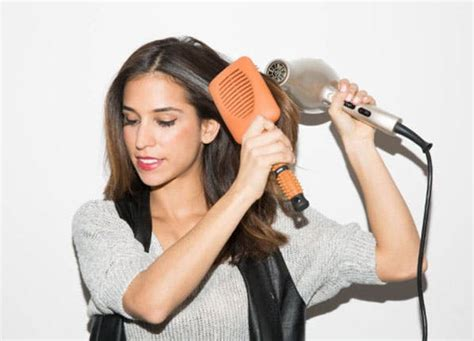 Hair Dryer Buat Anjing differences in hairbrushes purewow