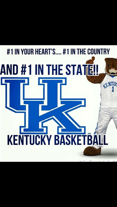 17 best images about kentucky 17 best images about kentucky wildcats on