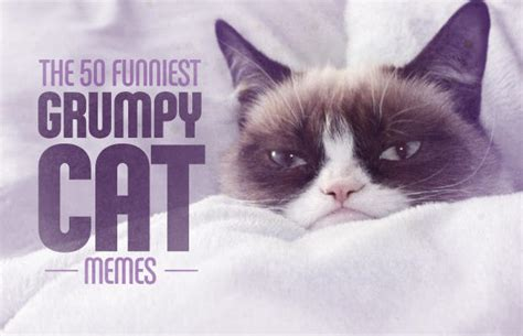 Grumpy Cat Funniest Memes - 22 happy and you know it the 50 funniest grumpy cat