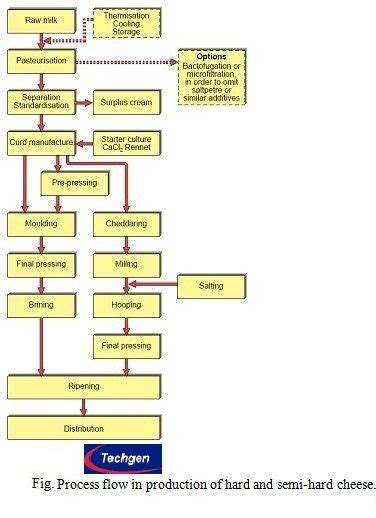 cottage cheese production flow chart of cheese production flow chart of cheese