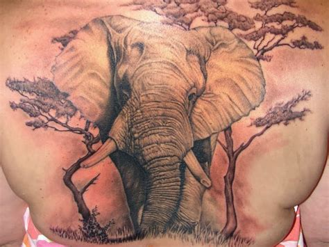 african elephant tattoo elephant design idea images photos memoir tattoos