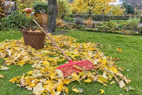 7 Ways To Prep Your Garden For Winter by 11 Ways To Prepare Your Garden For Fall Winter