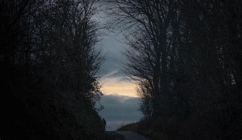 kostenlose foto baum natur wald ast licht stra 223 e sonnenlicht blatt blume gr 252 n kurve kostenlose foto baum natur wald ast schnee winter licht nebel sonnenaufgang nacht