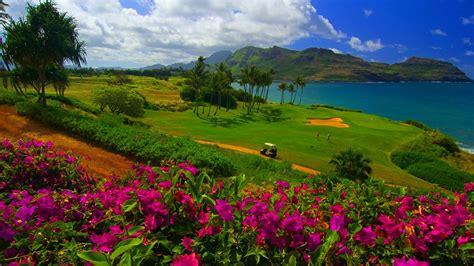 nature landscape water trees sea hawaii golf